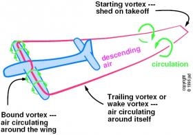 4. trailing with circulation.jpg