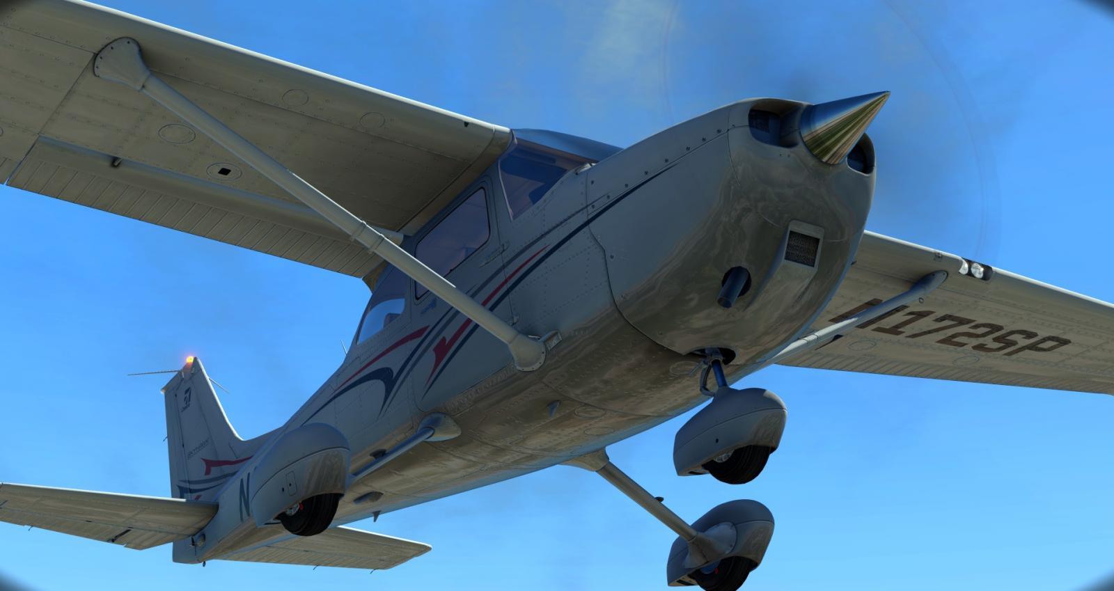 Cessna_172SP_8.jpg.c338676b827a5f4d57ef5