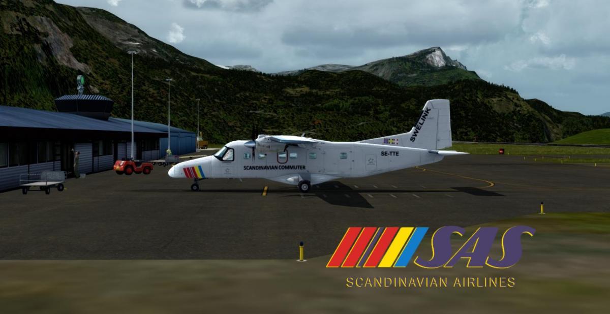 Carenado Do-228 SAS - Aircraft Skins - Liveries - X-Plane