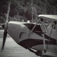 Saitek rudder pedals stopped working - X-Plane Linux - X-Plane Org Forum