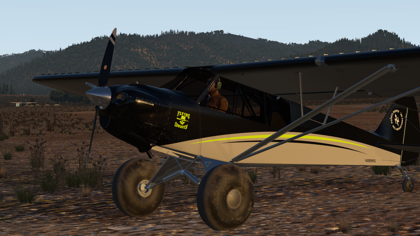 CubCrafters Carbon Cub EX - Big Tire Productions - X-Plane Org Forum