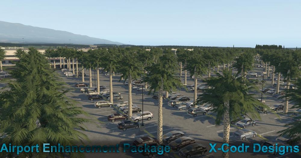 Hawaii Trees.jpg