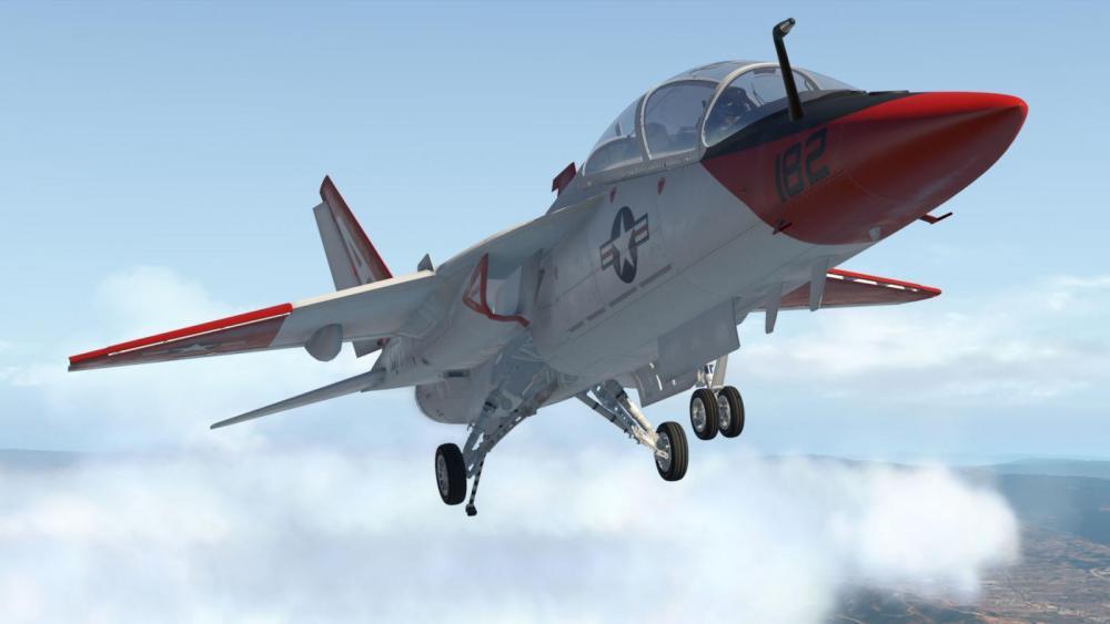 T-7N - 2020-05-29 10.41.18 AM.jpg